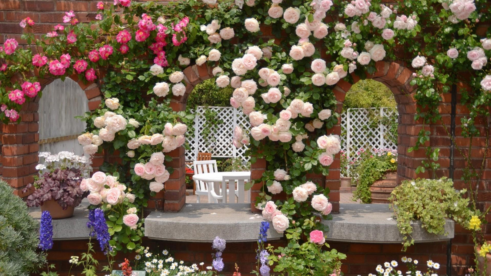 Вьющиеся розы создадут уютную атмосферу в беседке