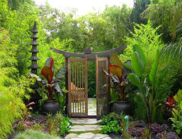 Растения для японского сада - названия и описание