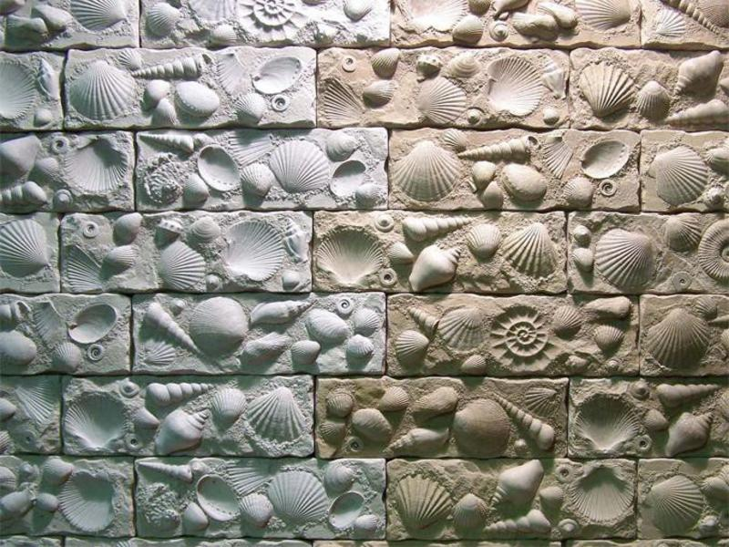 Форма с морскими раковинами
