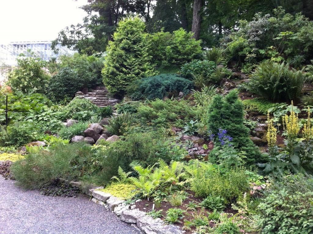 Сад, в котором со всеми нюансами повторяется природный облик гор и демонстрируется флора альпийских высокогорий принято называть альпийской горкой( альпинарием).