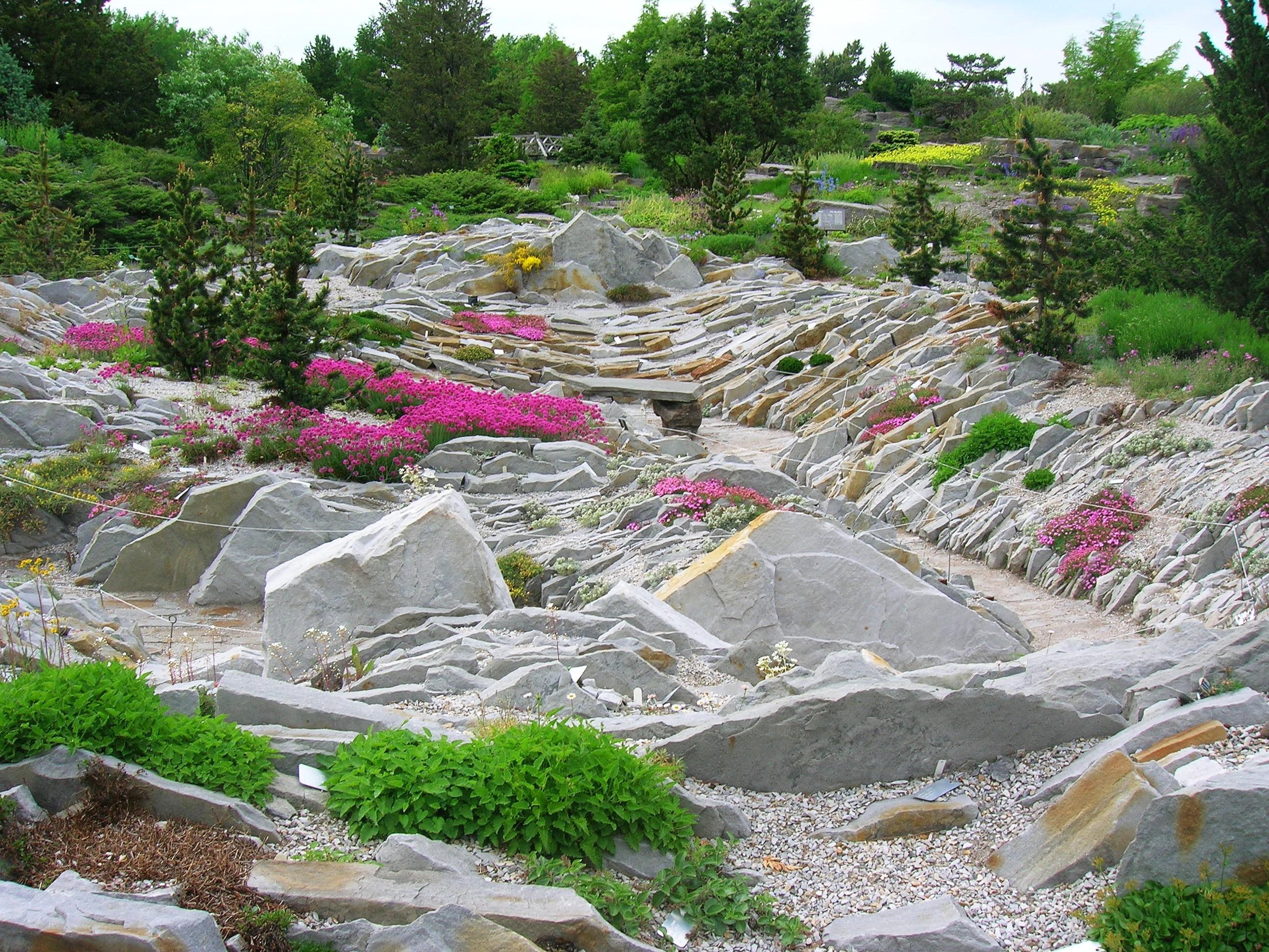 «Горная долина» — пейзажный каменистый сад, создающий образ высокогорной долины. Является художественной композицией.