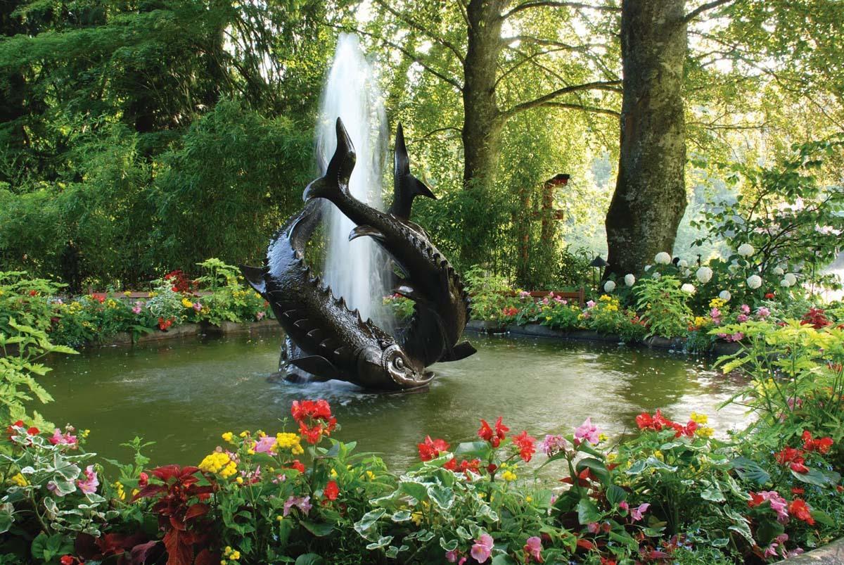 Фонтан трех осетров в саду Бутчартов-национальном историческом парке.