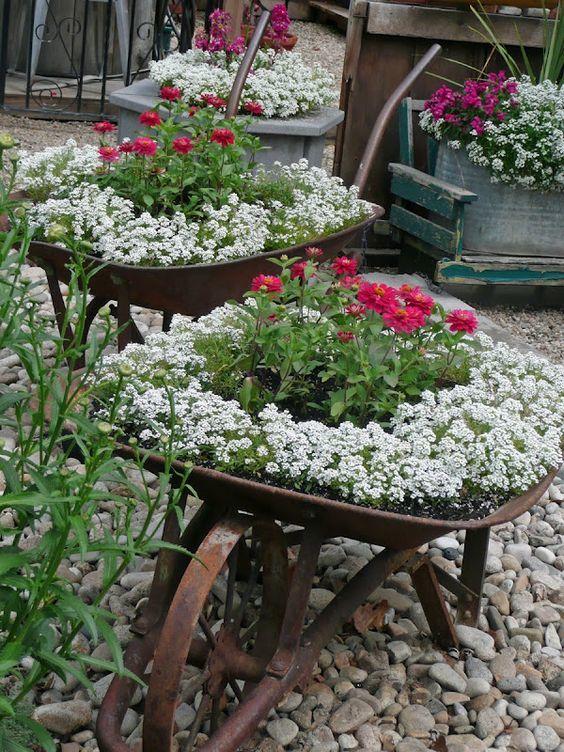 Контейнерные растения. 40 удивительных идей для сада