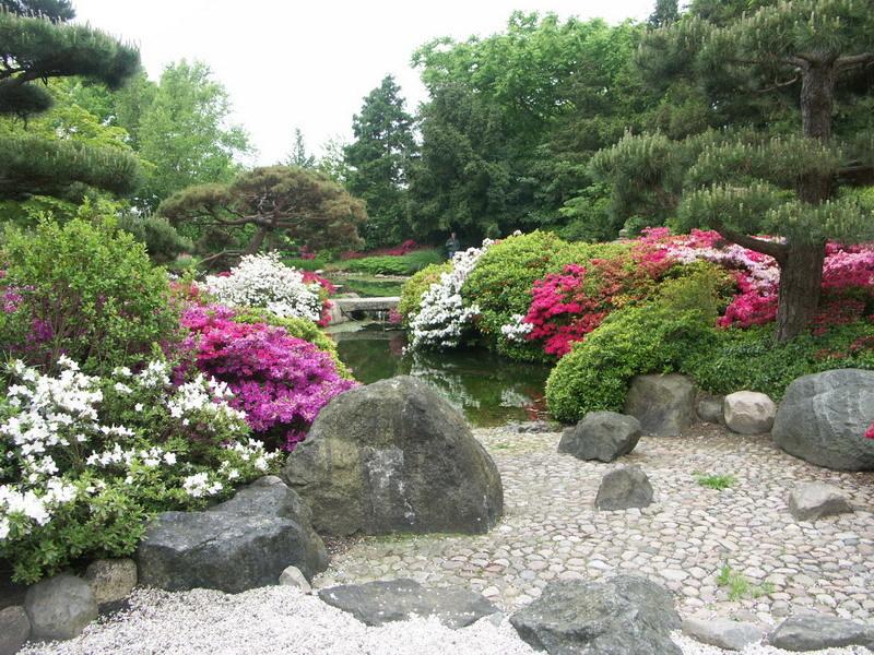 Расположив на дальнем плане сада растения с темной листвой насыщенного цвета , можно зрительно увеличить размеры участка, углубить его.