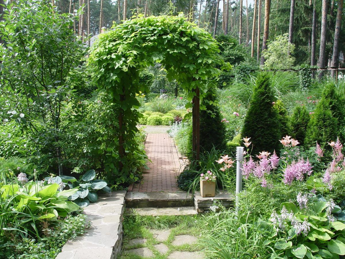 Визуальные экраны искажают пространство, изменяя перспективу садового участка, и как-будто приглашают перейти в следующую зону сада.