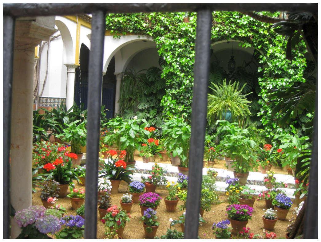 Позаботьтесь о месте для комнатных растений, которые переедут в патио на каникулы. Они тоже станут украшением вашего уютного уголка, а заодно оздоровятся на свежем воздухе.
