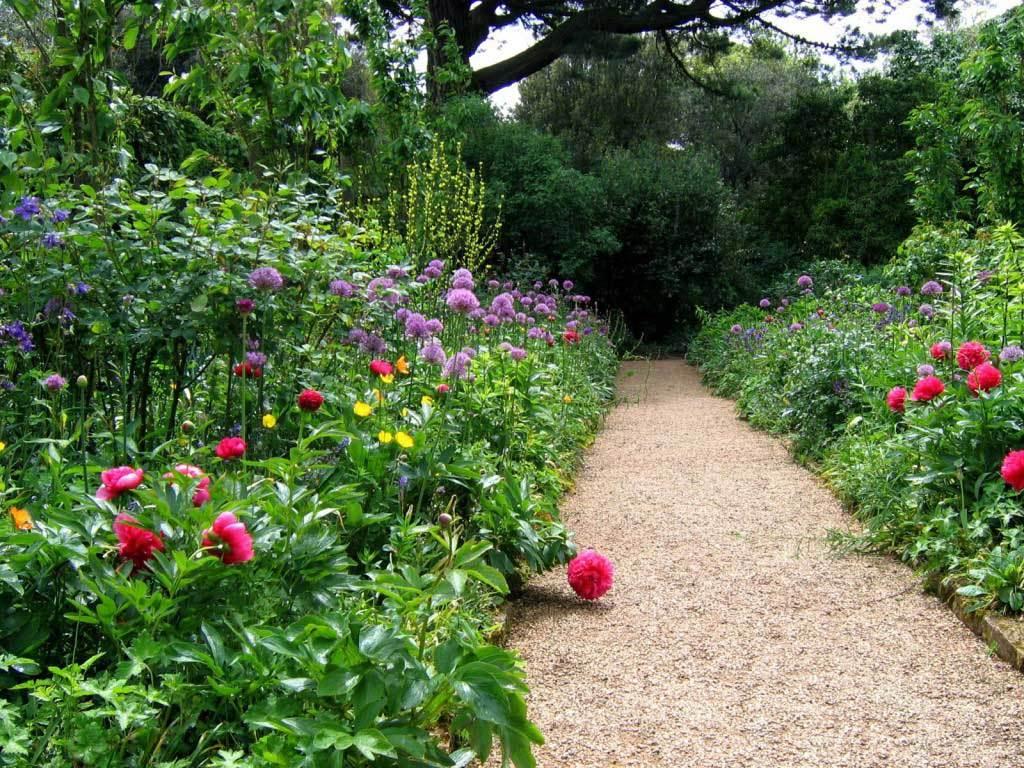 Гравийное покрытие для садовой дорожки вполне бюджетный вариант.