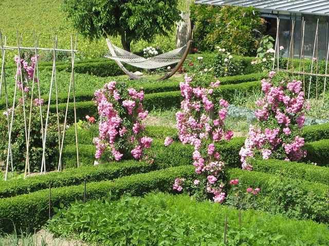 Легкие металлические опоры для плетистых роз в виде конуса, цилиндра, стенки, колонны можно разместить в любом уголке сада.