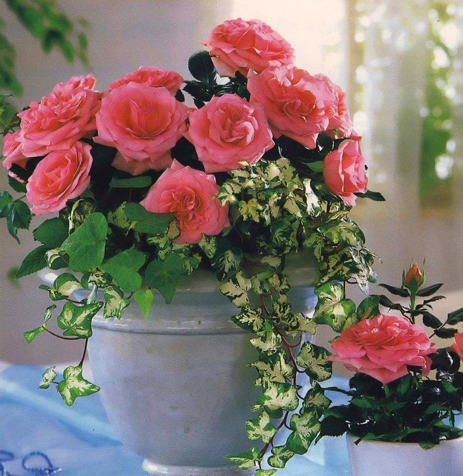 Керамическая ваза для букета роз