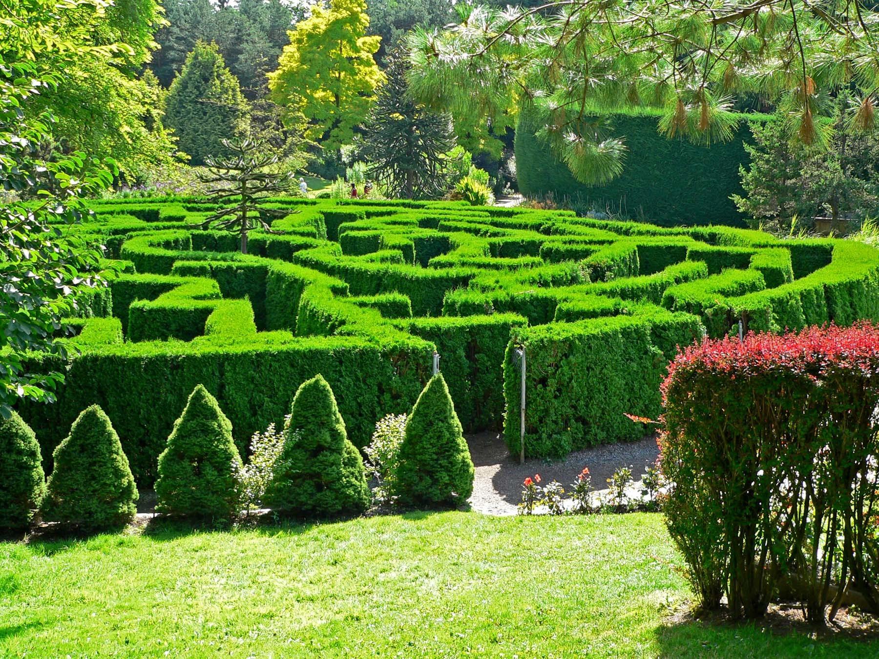 Живые самшитовые изгороди, отдельные декоративные объекты:шары, кубы и пирамидки будут украшать сад и зимой и летом.