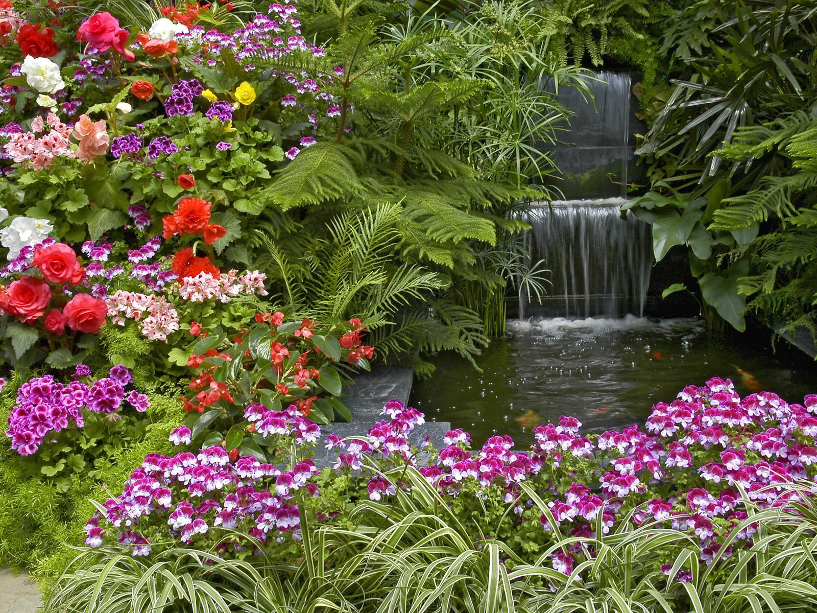 Посадите на клумбах яркие цветы, чтобы привлечь бабочек, а также подберите место для ягодных кустарников и поилок птицам.
