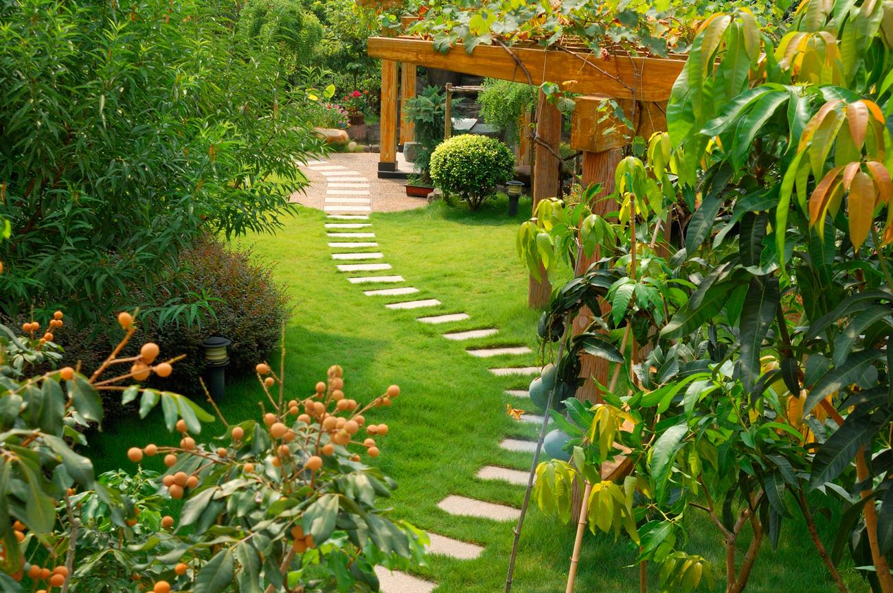 Общий пейзаж не должен напоминать коллекцию случайно высаженных растений.