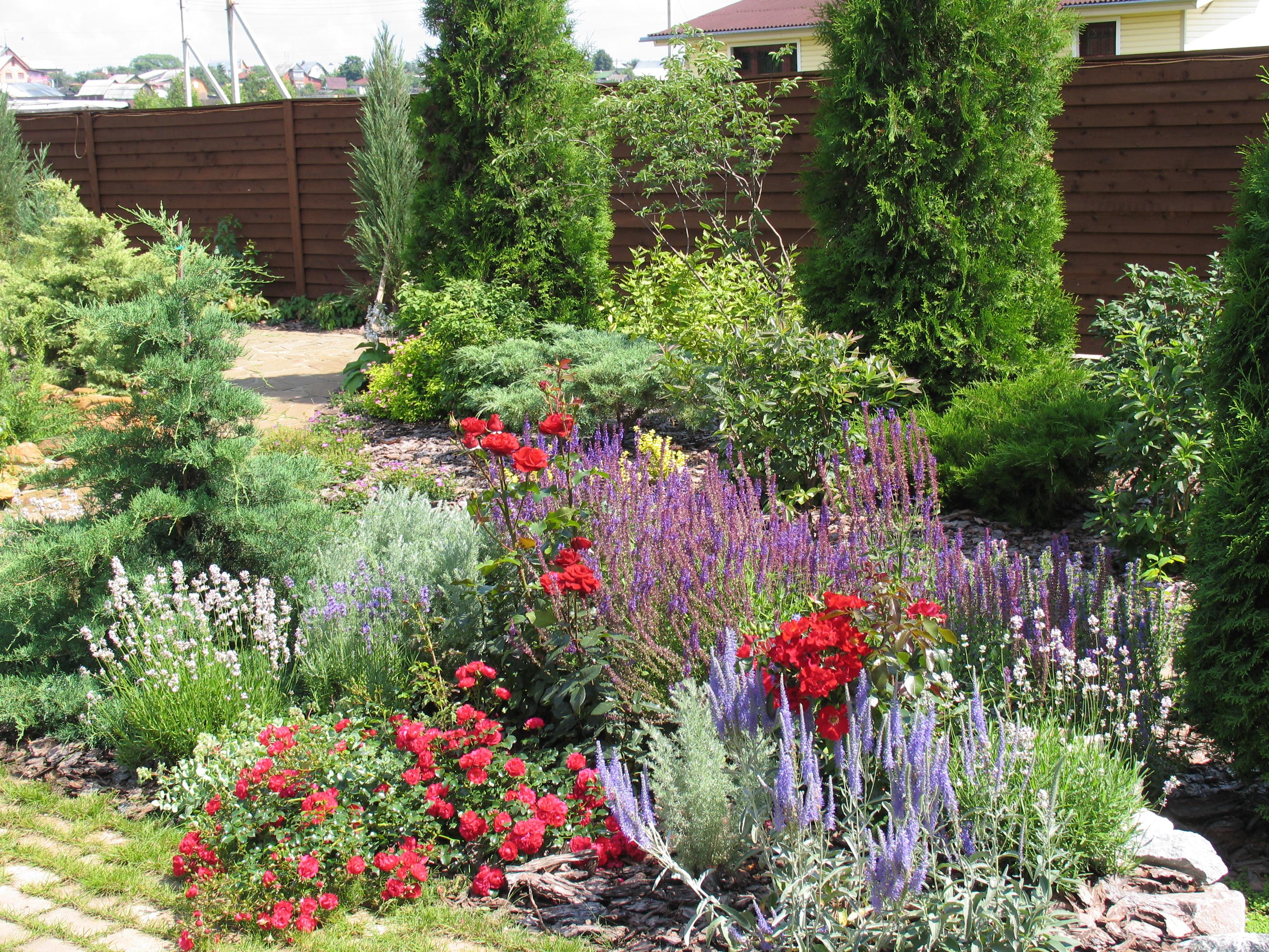 Многолетники и красивоцветущие кустарники, которые окрасят цветник яркими красками с весны до осени.