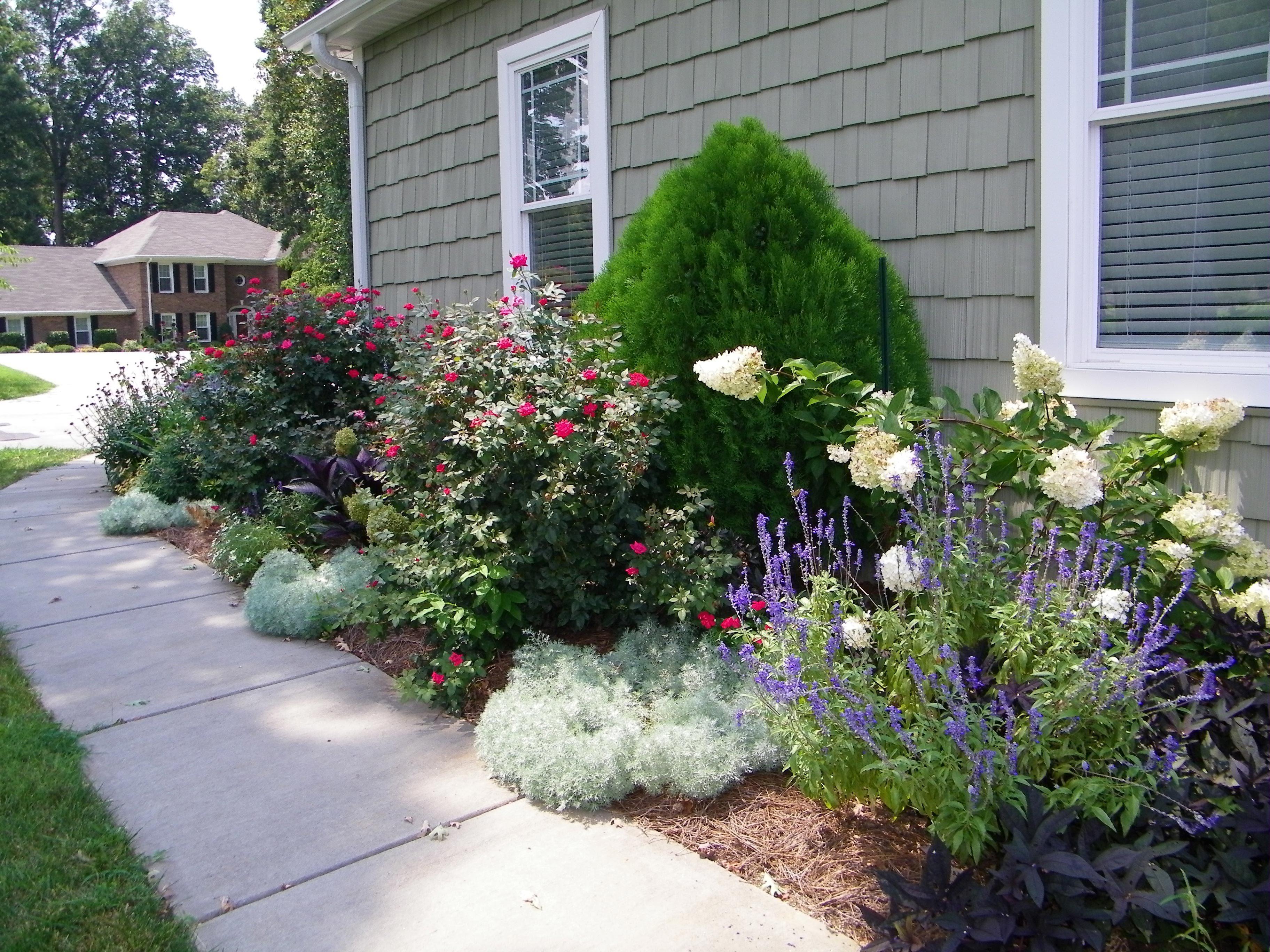 Для маленького цветника выберите два-три прекрасных растения