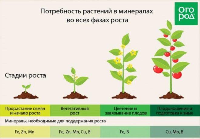 Преимущества жидких удобрений