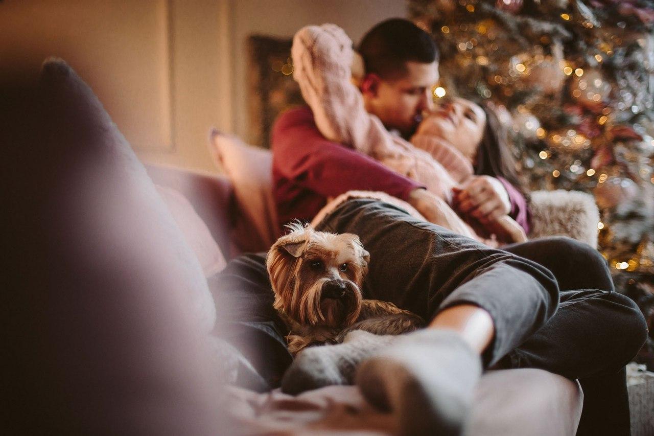 Фотосессия на рождество