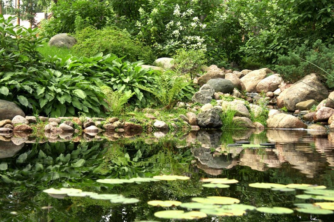 Водная гладь садового водоема прекрасно отражает расположенные на береговой линии растения, склонившиеся над водой, мостик или арку, увитую розами и клематисами. Такая симметричность также работает на зрительное расширение окружающего пространства.
