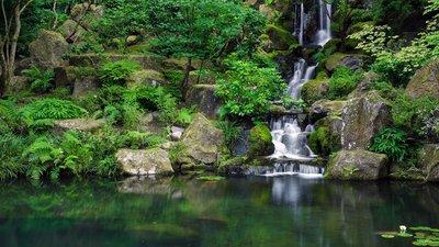 Небольшой водопад в японском саду