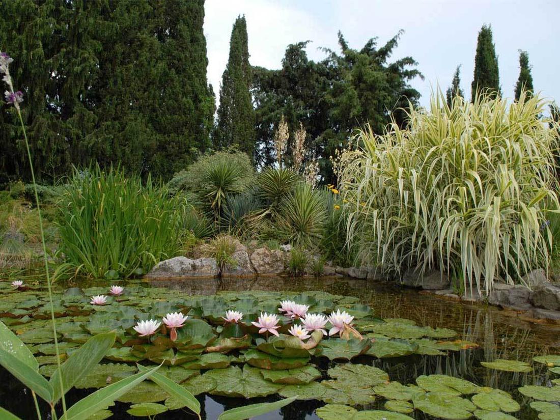 Такой мягкий, естественный стиль оформления уместен в пейзажном или сельском направлениях ландшафтного дизайна.