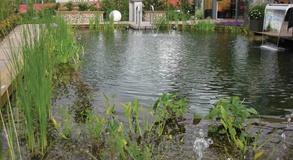 Вода в движении и падении хорошо насыщается кислородом и лучше остывает в жару, что особенно полезно для рыб и прудовых растений.