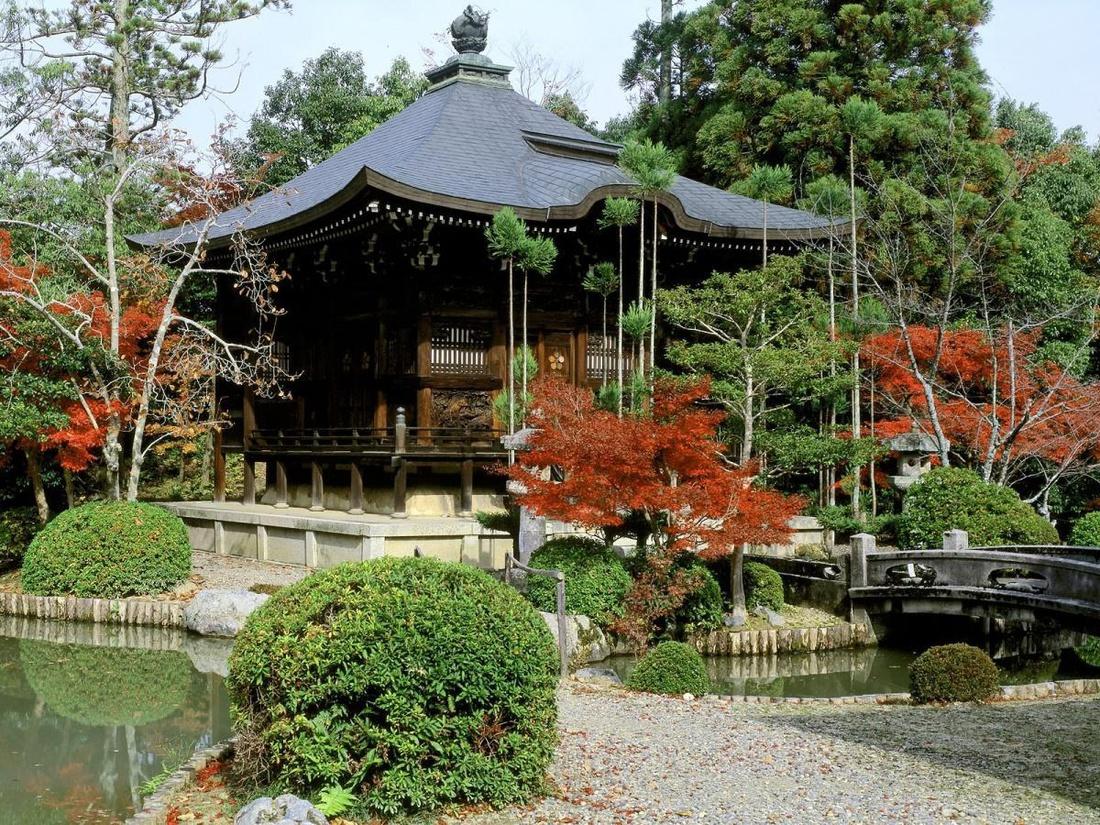 Пруд в японском стиле.