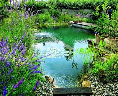 В пруду свободных очертаний обязательно должны быть прибрежные растения, которые скрывали бы его границы.